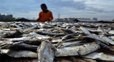 Polisi Gagalkan Penyelundupan 33 Karung Bom Ikan Asal Jerman