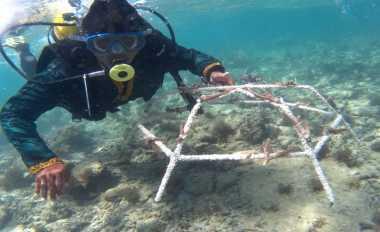 Dankormar: Konservasi Laut Menjamin Kedaulatan Pangan
