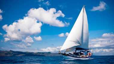Sail Karimata Bawa Kalimantan Barat Mendunia