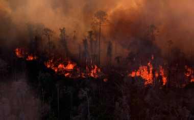 Pemda Diminta Bantu Desa Transmigrasi Terdampak Kebakaran Hutan