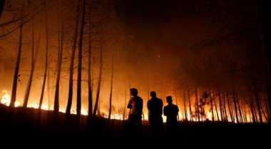 Kebakaran Hutan Meluas Ancam Pemukiman Warga