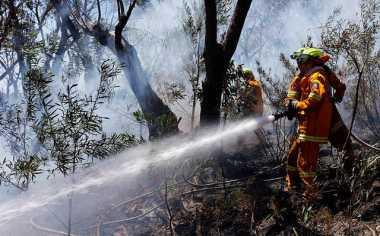 Tiga Helikopter Sulit Tembus Lokasi Kebakaran Hutan di Riau