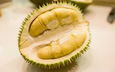 Takeru Kobayashi Penasaran Rasa Durian