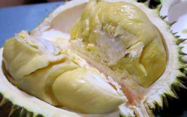 Durian Medan Lezat Diolah Jadi Berbagai Makanan