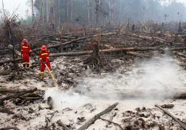 Keracunan Kabut Asap, 47 Siswa di Riau Pingsan