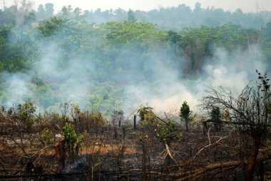 Akibat Bakar Lahan, Muncul Ratusan Titik Panas di Bengkulu