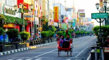Misteri Dua Pohon Besar di Yogyakarta