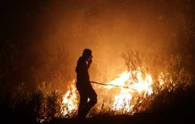 Hutan Rakyat di Kulon Progo Terbakar