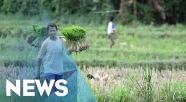 Dana Desa Tingkatkan Produktivitas Masyarakat