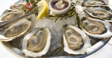 Makan Oyster Enggak  Boleh Dikunyah, Langsung Telan