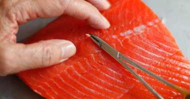 Trik Praktis Mencabut Duri Ikan