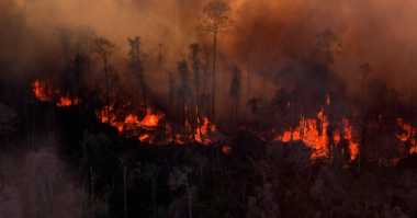Harapan Dokter-Dokter terhadap Musibah Kebakaran Hutan