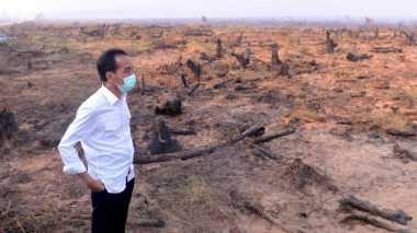 Gerindra: Presiden Jangan Pencitraan di Hutan Lagi!