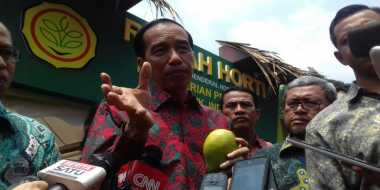 Presiden Jokowi Dorong Gerakan Buah Nasional