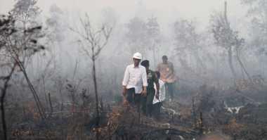 Presiden Bakal Ajak LSM Ikut Pulihkan Hutan Indonesia