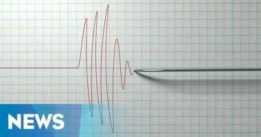Rote-Ndao Diguncang Gempa 3,7 SR
