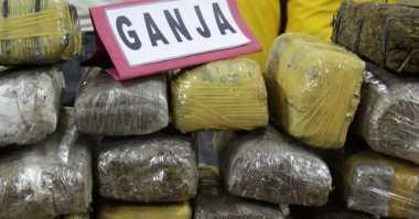 Polisi Gagalkan Penyelundupan 16 Paket Ganja ke Pontianak