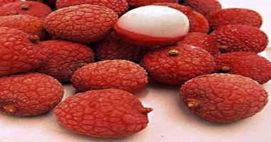 Keci, Buah Merah yang Bikin Chinese Food Sehat