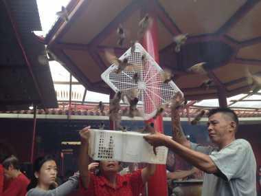 Penjual Burung Pipit Untung Jutaan Rupiah saat Imlek