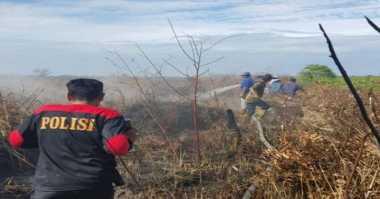 Terbukti Bakar Hutan, Polisi Amankan Enam Pelaku