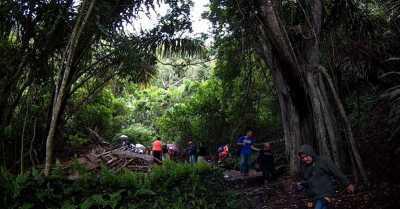 Mistreri Taru Menyan, Pohon Penjaga Makam Berusia 11 Abad