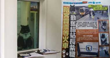 Seekor Kucing Jadi Karyawan Stasiun KA Inggris