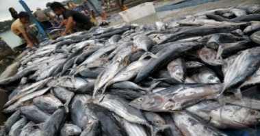 Gelombang Laut Tinggi, Ikan di Pasaran Menghilang