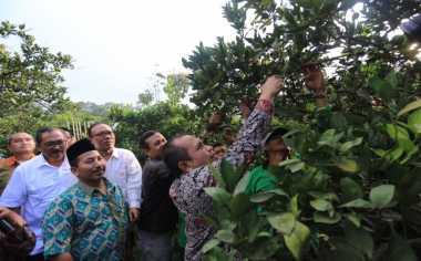 Dana Desa Kurangi Kesenjangan Antardesa di Makassar