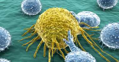 Inilah Enam Mitos tentang Kanker Rahim