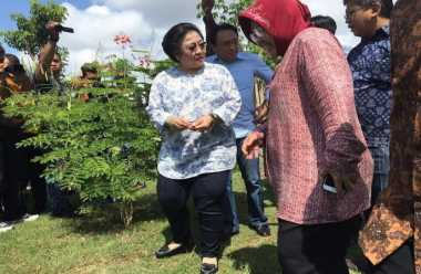 Megawati & Tri Rismaharini Asyik Dialog di Taman Harmoni