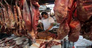 Petugas Gagalkan Usaha Penyelundupan Daging Babi Hutan Seberat 2 Ton