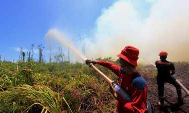9 Titik Panas Terdeteksi di Aceh dan Sumsel