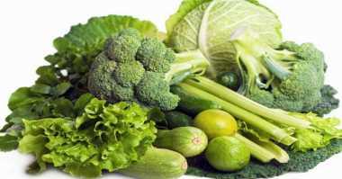 Mencoba Jadi Vegan, Bondan Winarno Tanam Sayuran di Halaman