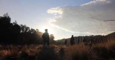 Hingga Pagi Ini, Dua Pendaki Hilang di Semeru Belum Ditemukan