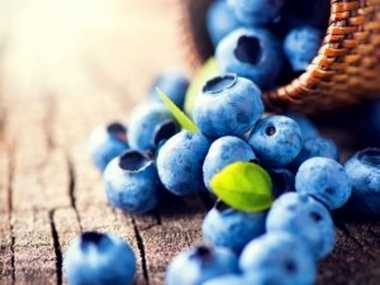 Manfaat Ngemil Blueberry untuk Pencernaan dan Otak