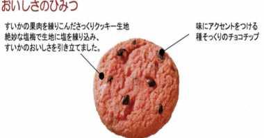Cookies Unik Rasa Semangka