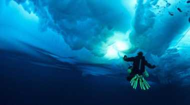 Keindahan Bawah Laut Alor Bikin Penyelam Terlena