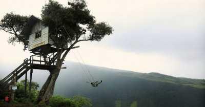 Tawarkan Wisata Rumah Pohon, 7.000 Turis Padati Gunung Beruk