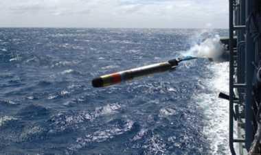 Angkatan Bersenjata Swedia Beli Torpedo Canggih