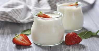 Yogurt Cocok Dijadikan Makanan Pengganti