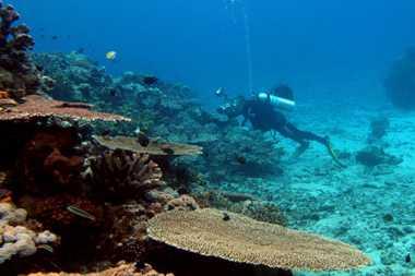 Jaga Kelestarian Kekayaan Alam Destinasi Wisata Indonesia