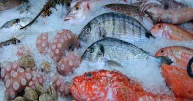 Begini Cara Mudah Memasak Seafood Beku