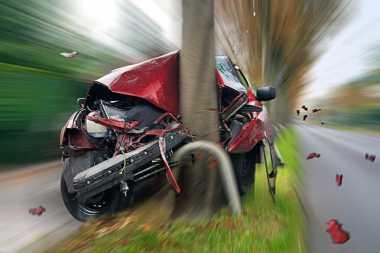 Lendir Siput Sebabkan Mobil di Jerman Kecelakaan