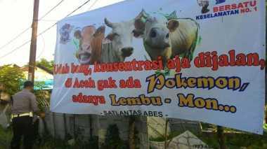 """Bukan Pokemon, di Aceh Hanya Ada """"Lembu-Mon"""""""