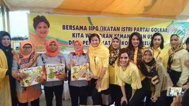 Istri Setya Novanto Lantik IIPG Provinsi Batam