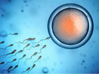 Mengungkap Fakta, Berapa Lama Sperma Bisa Hidup?