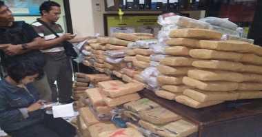 Polisi Tangkap Marketing Narkoba di Bekasi, Ratusan Kg Ganja Diamankan