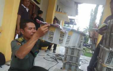 Tak Miliki Dokumen Kesehatan, Ribuan Burung Hias Disita