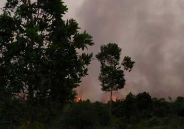 Api Tak Kunjung Padam, Satgas Karhutla Berjibaku Padamkan Kebakaran Lahan