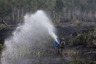Polda Riau Selidiki Dua Perusahaan Terduga Pembakar Lahan